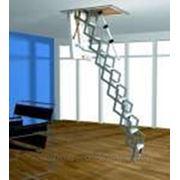 Лестница чердачная Roto Ножничная Mini (h от 225-275) фото