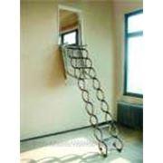 Лестница чердачная Oman Ножничная Verticale фото