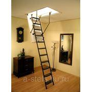 Лестницы из металла (нержавеющая сталь) модель 19