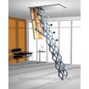 Лестница чердачная Roto Ножничная Exclusiv (h от 220-279) фото