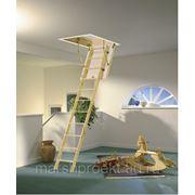 Чердачная лестница Mini