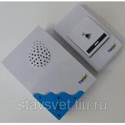 Звонок Feron (23679) E-223(DB606) кнопка IP44, 32 мелодии, 2*1,5V/AA, белый, синий фото
