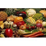 Выращивание овощей фото