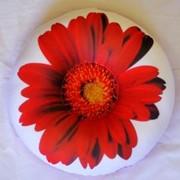 Антистрессовая подушка Цветочный круг фото