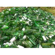 Стеклобой зеленый (ЗС)