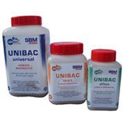 UNIBAC-winter фото