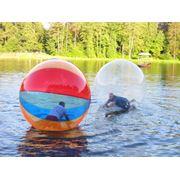 Прокат водных шаров костюмов сумо батутов фото