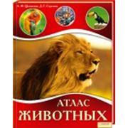 Атлас животных фото