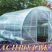 Теплица из цельногнутой трубы. Сибирская 3х6 м. фото