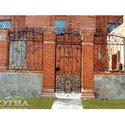 Кованые ворота, двери и заборы