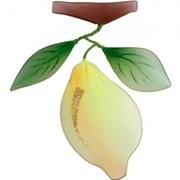 Украшение для штор Лимон -240*210 модель AF0009 фото
