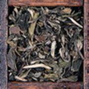 Белый чай «Пай Му Тан» фото