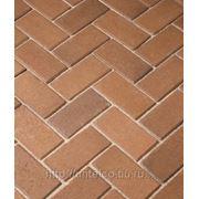 Тротуарная клинкерная брусчатка Penter Gelbbunt фото
