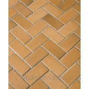 Тротуарная клинкерная брусчатка Husum Gelbbunt фото