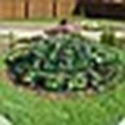 Заборчик для клумбы круглый фото