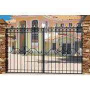 Ворота прозрачные фото