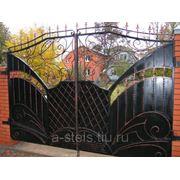 Кованые ворота и калитка модель 18