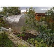 Сотовый поликарбонат, прозрачный, ТЕПЛИЧНЫЙ, 4мм,2,1х6м фото