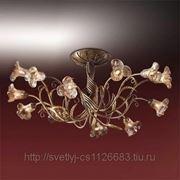 Люстра Odeon Light 1814/12 коричневый Aura фото