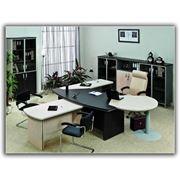 Мебель для офисов «Берлин-Директор» фото