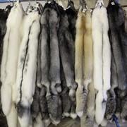 Мех лисицы, цена, Украиана
