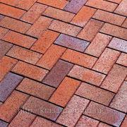 404 тротуарный gala multico красно-синий пестрый, обожженный фото