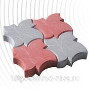 Тротуарная плитка Кленовый лист фото