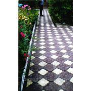 Тротуарная плитка Клевер Краковский * 300х300 / 110х150 фото