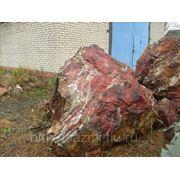 Валуны (галька, змеевик, кварцит, песчаник) фото