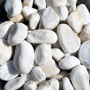 Галька мраморная белая 20кг. фр. 40-80мм фото