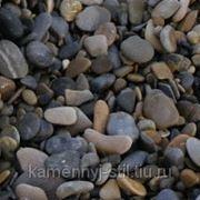 Галька речная цветная 5-25мм 40кг. фото