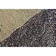 Шрот подсолнечный Жирные кислоты. фото