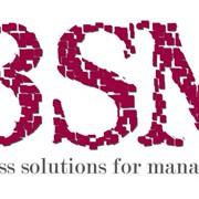 Бухгалтерский и управленческий учет BSM фото