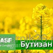 Гербицид БУТИЗАН 400, КС (400 г/л) фото