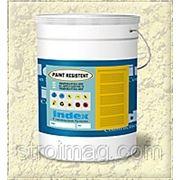 Краска по бетону PAINT RESISTANT (ПЭЙНТ РЕЗИСТЕНТ) 10 кг, INDEX
