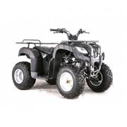 Квадроцикл ATV 150U фото