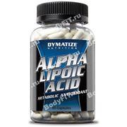 Alpha Lipoic Acid (90 капс.) фото