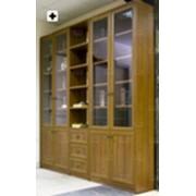 Библиотека классическая фото