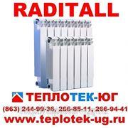 Радиаторы отопления биметаллические Raditall/ Радитал (Италия) фото