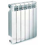 Радиатор отопления (батарея) Raditall Bimetallo 500x6 фото