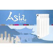 Радиатор отопления биметаллический Asia 500/80 фото