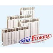 Радиатор алюминиевый Нова Флорида / Nova Florida S4 350x100 фото