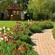 Дизайн сада, ландшафтный дизайн сада фото
