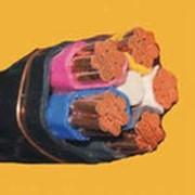 Кабели силовые с пластмассовой изоляцией АВВГз, ВВГз фото