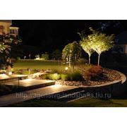 Освещение в саду, декоративная подсветка растений и водоемов фото