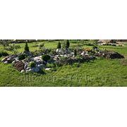 Каменные сады, рокарии, газоны фото