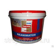 Спецгрунт PARADE Reanimator G40 по старым покрытиям 2,5л фото