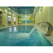 Роспись стен бассейна фото