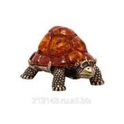 Сувенир Черепаха Панцирная фото