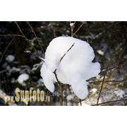 Снег фото фото